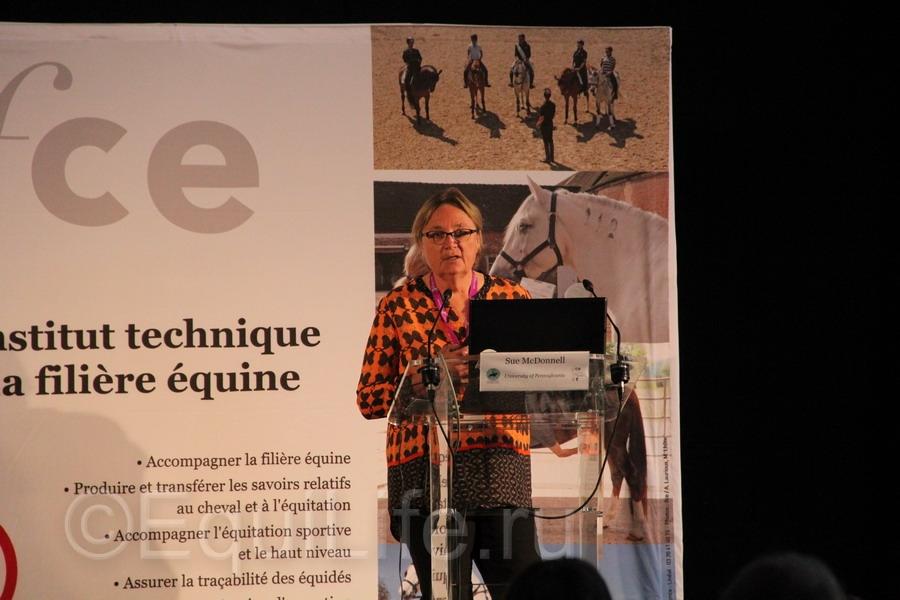 Отчет о посещении 12th International Society Equitation Science 2016 - фото IMG_0493_wm, главная События Тренинг , конный журнал EquiLIfe