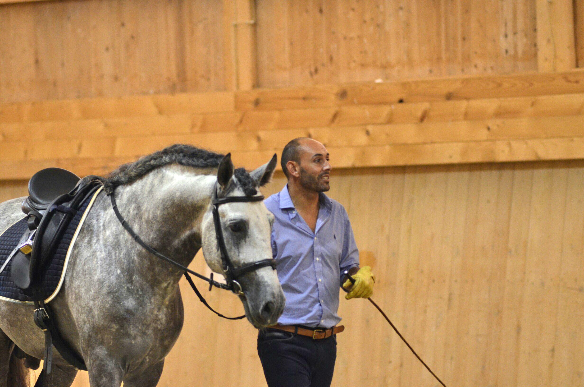 """Интервью. Paulo Sérgio: """"Важно - знать чего ты хочешь"""" - фото 7X3kvOw8ROg, главная Интервью , конный журнал EquiLIfe"""