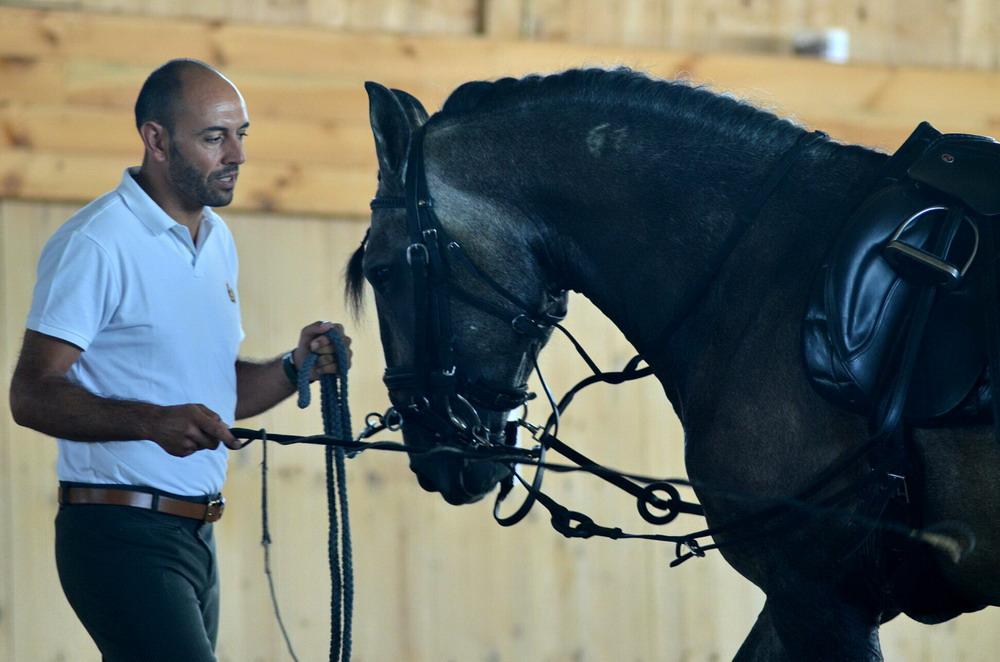 """Интервью. Paulo Sérgio: """"Важно - знать чего ты хочешь"""" - фото X8E7bWwvPzA, главная Интервью , конный журнал EquiLIfe"""
