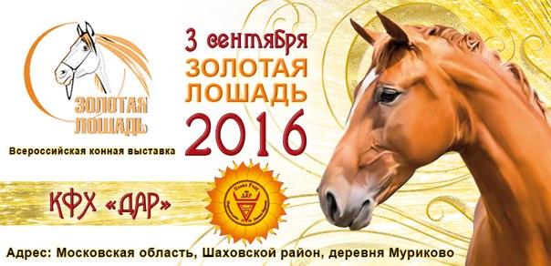 """Выставка """"Золотая Лошадь"""" - 2016 - фото l2FAwMs18uE, Новости , конный журнал EquiLIfe"""