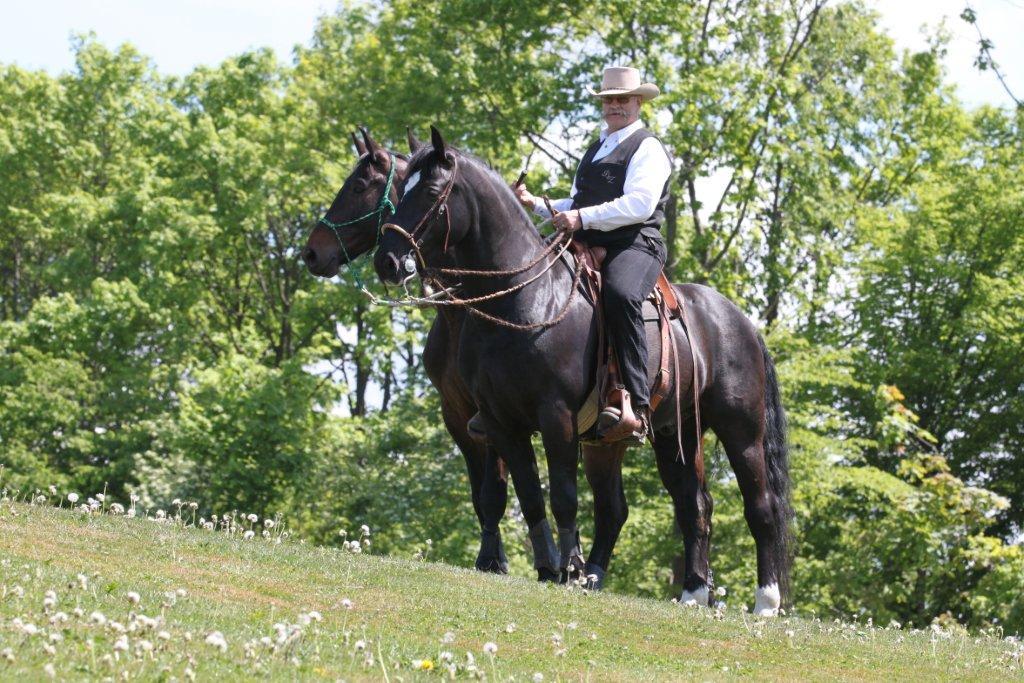 Берни Замбайл: о тесте лошади на кордео - фото 1658186_422639954532766_291552074_o, главная Разное Тренинг , конный журнал EquiLIfe