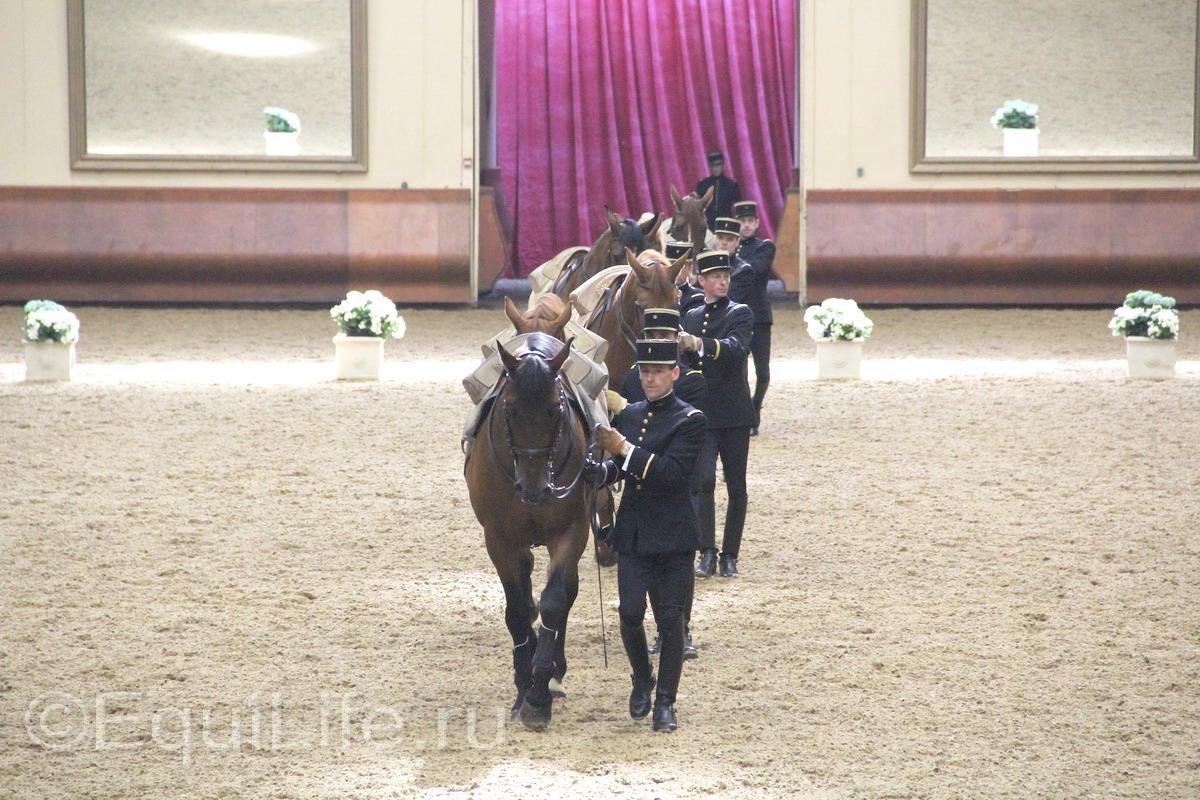 Французская национальная школа верховой езды Кадр Нуар: все о Школе ч.2 - фото IMG_0573_wm, главная Конные истории Содержание лошади , конный журнал EquiLIfe