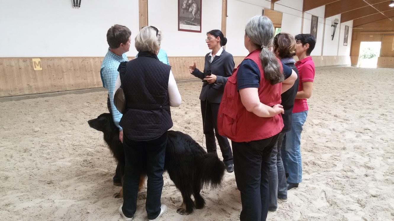 Workshop-2016 от Ани Беран. Два мнения. - фото IMG_33698, Аня Беран главная События Тренинг , конный журнал EquiLIfe