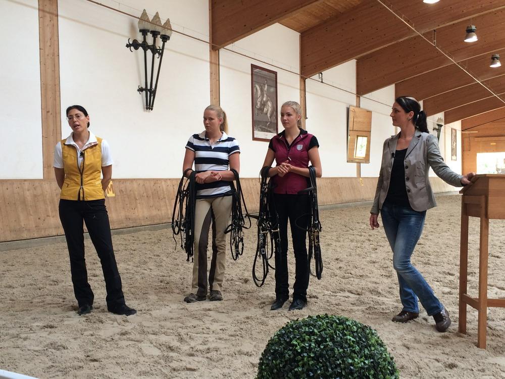 Workshop-2016 от Ани Беран. Два мнения. - фото IMG_3697, Аня Беран главная События Тренинг , конный журнал EquiLIfe