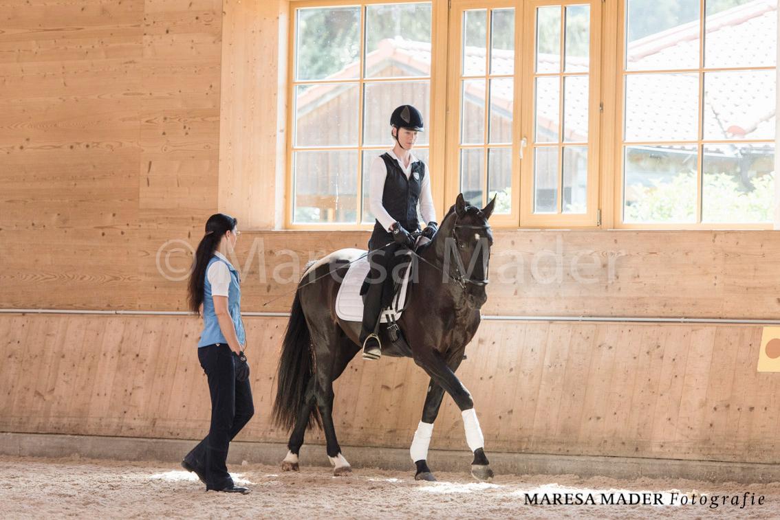 Workshop-2016 от Ани Беран. Два мнения. - фото MMD6261, Аня Беран главная События Тренинг , конный журнал EquiLIfe