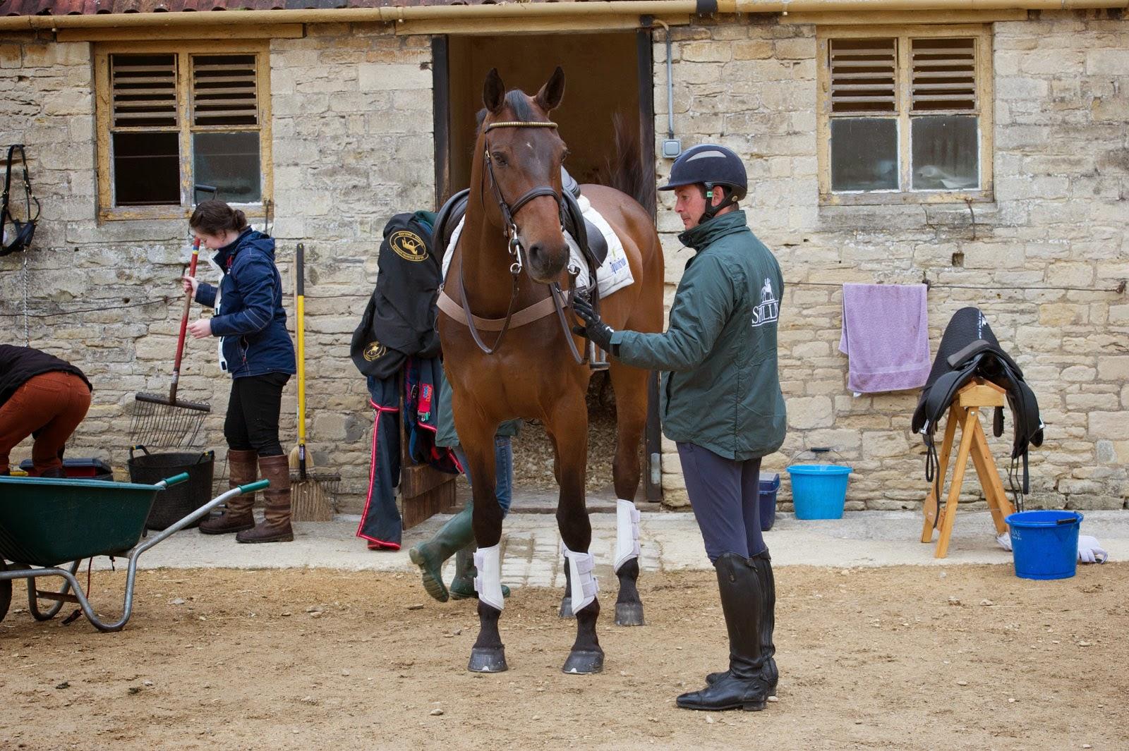 Приобретение лошади. Коротко о главном - фото badminton-horse_co_uk, главная Содержание лошади Тренинг , конный журнал EquiLIfe