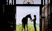 Фото: equus-journeys.com
