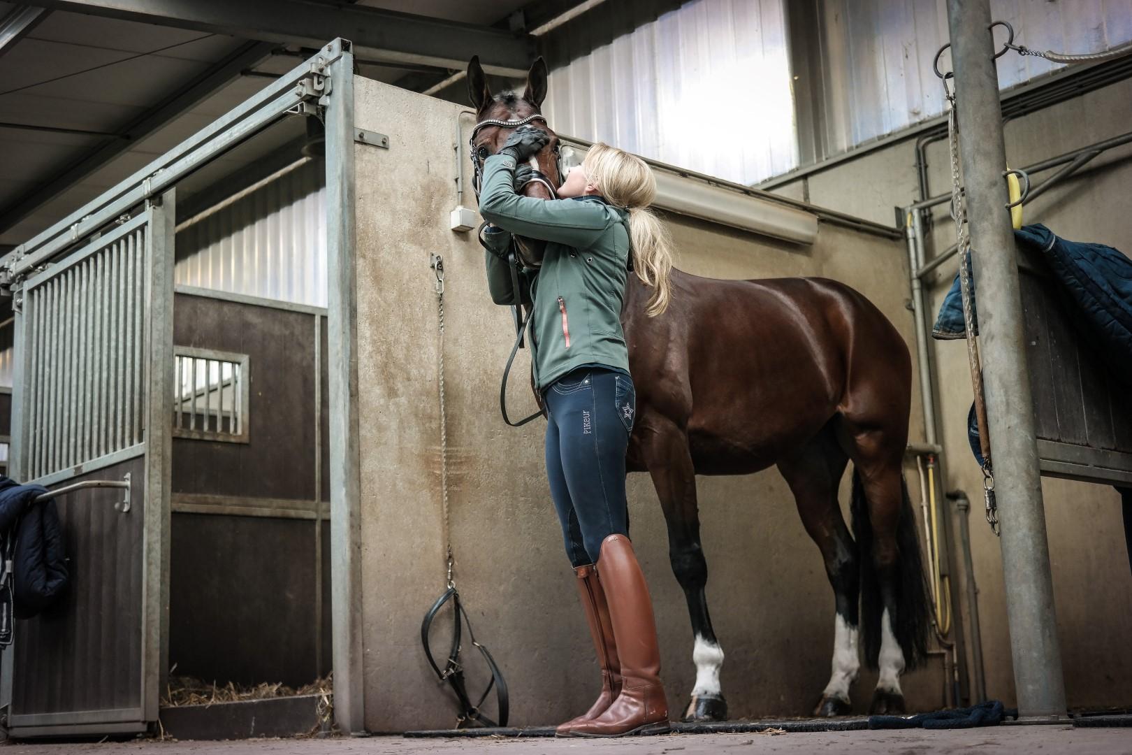 Приобретение лошади. Коротко о главном - фото ingecoenen_com, главная Содержание лошади Тренинг , конный журнал EquiLIfe