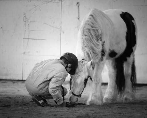 Фотографии с историей: выставка Стефани Мак-Коллистер. - фото IMG_9537-2, главная Разное , конный журнал EquiLIfe