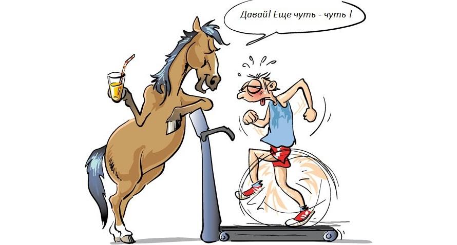 Верховая езда как фитнесс - фото vielseitigkeitsfoerderung_de, главная Разное , конный журнал EquiLIfe