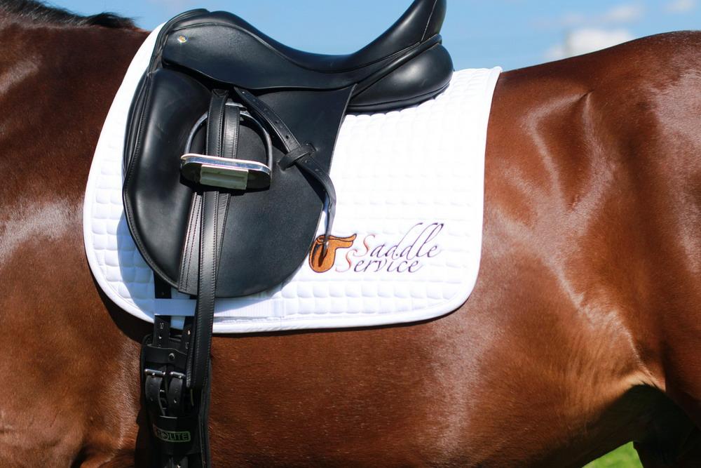 Подбор седла - фото wW2TSLMzGDQ, главная Содержание лошади Тренинг , конный журнал EquiLIfe