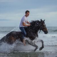 Мирон Бокочи (Miron Bococi) - фото 13243683_798772093593530_5648136952654546319_o-200x200, главная Разное , конный журнал EquiLIfe