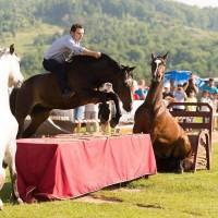Мирон Бокочи (Miron Bococi) - фото 13566995_817766865027386_5470472775586841440_n-200x200, главная Разное , конный журнал EquiLIfe