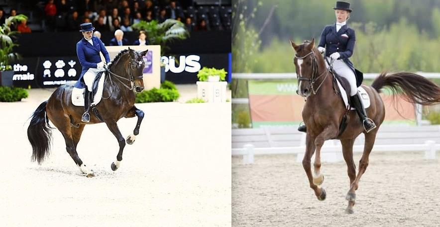 25-летний юбилей частного коневладения в России - фото 2313, Разное , конный журнал EquiLIfe