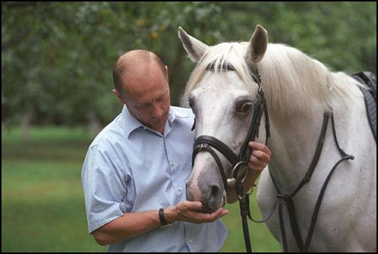 25-летний юбилей частного коневладения в России - фото 640.i_400E5234_2, Разное , конный журнал EquiLIfe