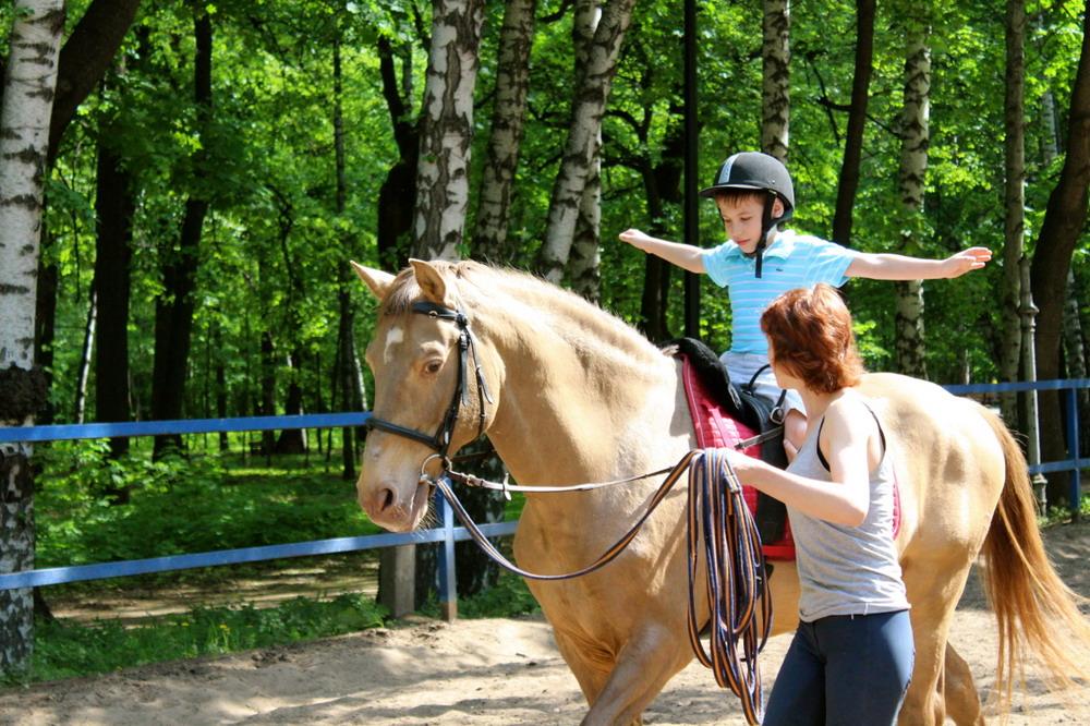 Спортивная школа или частный прокат? - фото az35_ru, главная Разное , конный журнал EquiLIfe