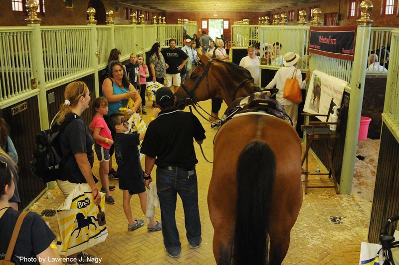 Спортивная школа или частный прокат? - фото equisearch_com, главная Разное , конный журнал EquiLIfe