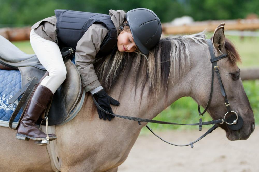 Спортивная школа или частный прокат? - фото horsemusclecare_com, главная Разное , конный журнал EquiLIfe