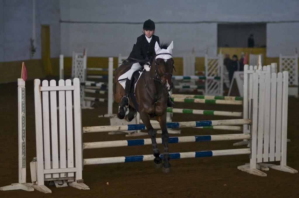 Спортивная школа или частный прокат? - фото ramns_ru, главная Разное , конный журнал EquiLIfe