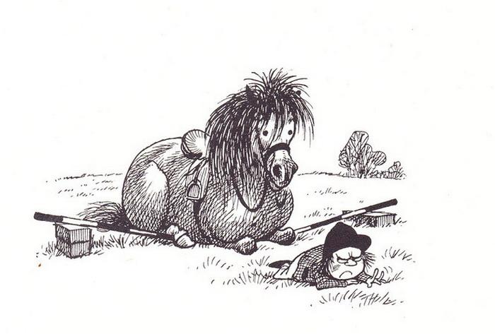Конь в луже - фото s314724769853485193_p375_i1_w665, главная Конные истории , конный журнал EquiLIfe