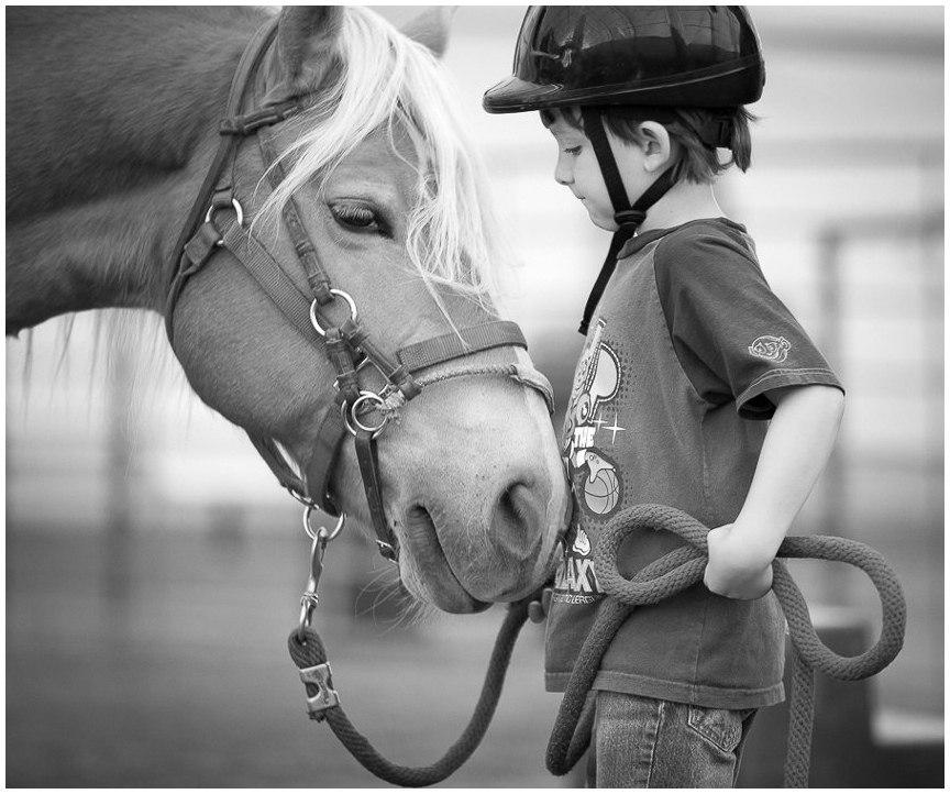 Фотографии с историей: выставка Стефани Мак-Коллистер. - фото wr8FVK17Zeo, главная Разное , конный журнал EquiLIfe