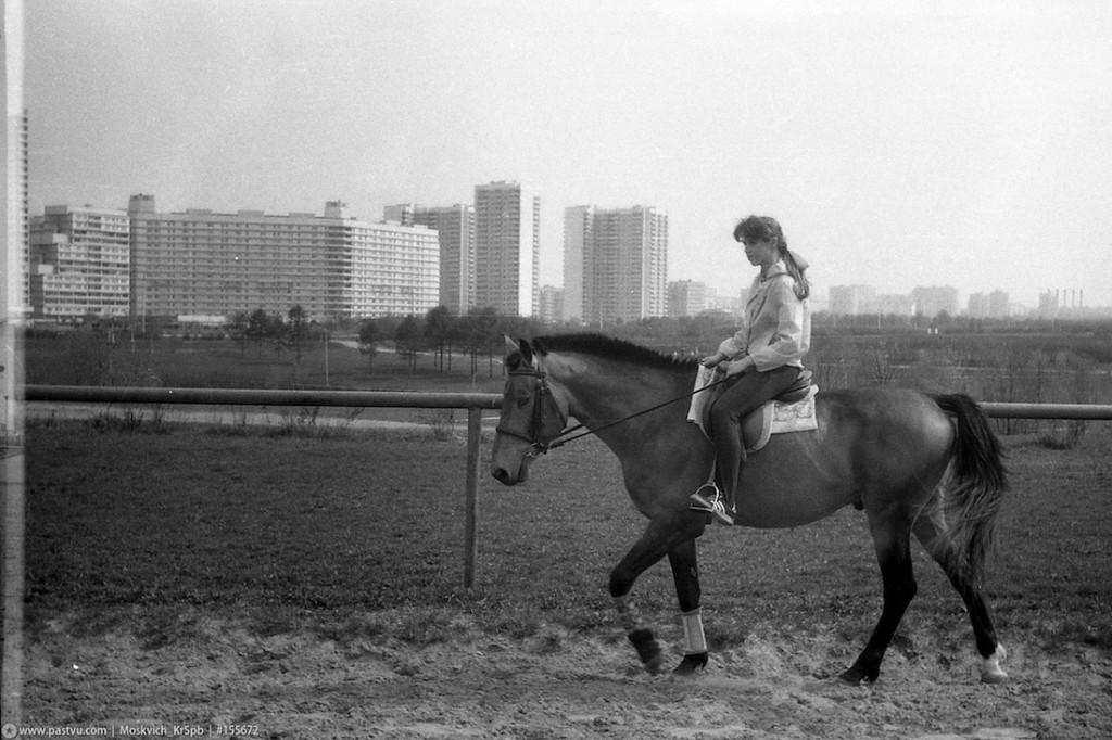 ВНИМАНИЕ, КОНКУРС! - фото original-1024x682, Разное , конный журнал EquiLIfe
