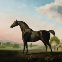 Художник Джордж Стаббс (1724—1806) - фото 16d3db1f954dd646231cbd5b7f286050-200x200, главная Фото , конный журнал EquiLIfe