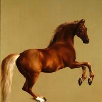 Художник Джордж Стаббс (1724—1806) - фото 1b020a1902061c6600d0a30070668e7d-200x200, главная Фото , конный журнал EquiLIfe