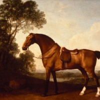 Художник Джордж Стаббс (1724—1806) - фото 1ddf2f92dcb6904ec75d0ed82f5c87db-200x200, главная Фото , конный журнал EquiLIfe