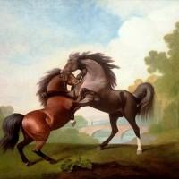 Художник Джордж Стаббс (1724—1806) - фото 8f244fca66049390b80eb8b60469b91d-200x200, главная Фото , конный журнал EquiLIfe