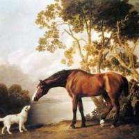 Художник Джордж Стаббс (1724—1806) - фото 910148785b6f081671fa8ded3450c0a7-200x200, главная Фото , конный журнал EquiLIfe