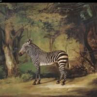 Художник Джордж Стаббс (1724—1806) - фото George-Stubbs-634845-200x200, главная Фото , конный журнал EquiLIfe