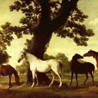 Художник Джордж Стаббс (1724—1806) - фото George_Stubbs_014-200x200, главная Фото , конный журнал EquiLIfe