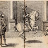 Антуан де Плювинель де ла Бом (1555—1620) - фото Pluvinel26-200x200, главная Конные истории Фото , конный журнал EquiLIfe