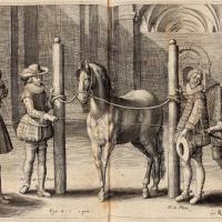 Антуан де Плювинель де ла Бом (1555—1620) - фото Pluvinel4-200x200, главная Конные истории Фото , конный журнал EquiLIfe