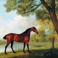 Художник Джордж Стаббс (1724—1806) - фото T02374_10-200x200, главная Фото , конный журнал EquiLIfe