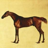 Художник Джордж Стаббс (1724—1806) - фото fb79d73962bc2ab324ef12666eb1a3b4-200x200, главная Фото , конный журнал EquiLIfe