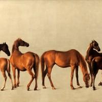 Художник Джордж Стаббс (1724—1806) - фото jpg-200x200, главная Фото , конный журнал EquiLIfe