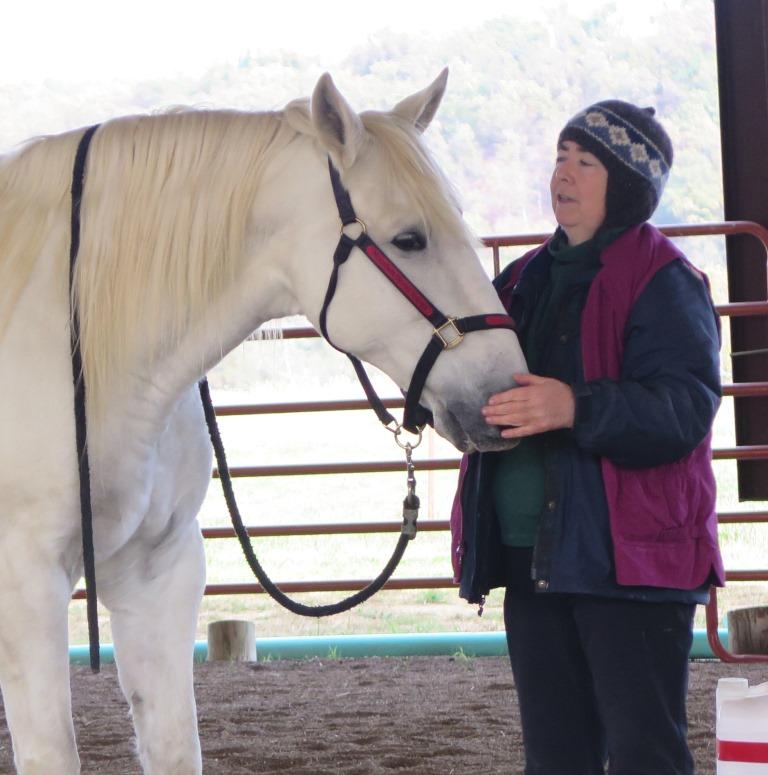 Интервью с Александрой Курланд (Alexandra Kurland) - пионером использования кликер-метода в тренинге лошадей - фото Marinero-standing, главная Интервью Тренинг , конный журнал EquiLIfe