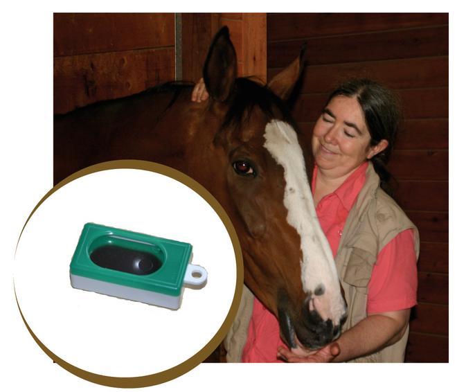 Интервью с Александрой Курланд (Alexandra Kurland) - пионером использования кликер-метода в тренинге лошадей - фото course_pg_1_Pg_logo, главная Интервью Тренинг , конный журнал EquiLIfe
