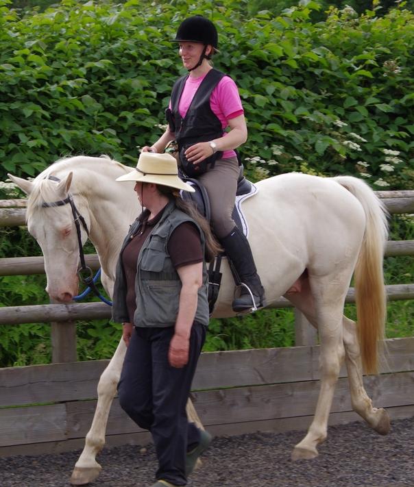 Интервью с Александрой Курланд (Alexandra Kurland) - пионером использования кликер-метода в тренинге лошадей - фото imgp0592, главная Интервью Тренинг , конный журнал EquiLIfe