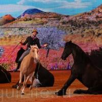 HOP TOP SHOW EQUITANA 2017 - фото IMG_1649_wm_resize-200x200, главная События Фото , конный журнал EquiLIfe
