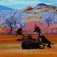 HOP TOP SHOW EQUITANA 2017 - фото IMG_1679_wm_resize-200x200, главная События Фото , конный журнал EquiLIfe