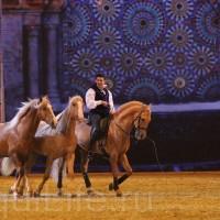 HOP TOP SHOW EQUITANA 2017 - фото IMG_1744_wm_resize-200x200, главная События Фото , конный журнал EquiLIfe