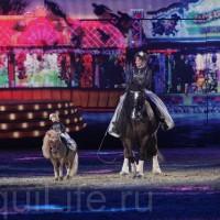 HOP TOP SHOW EQUITANA 2017 - фото IMG_1862_wm_resize-200x200, главная События Фото , конный журнал EquiLIfe