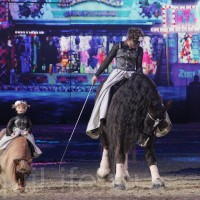 HOP TOP SHOW EQUITANA 2017 - фото IMG_1881_wm_resize-200x200, главная События Фото , конный журнал EquiLIfe