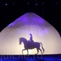 HOP TOP SHOW EQUITANA 2017 - фото IMG_1886_wm_resize-200x200, главная События Фото , конный журнал EquiLIfe