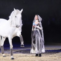HOP TOP SHOW EQUITANA 2017 - фото IMG_1933_wm_resize-200x200, главная События Фото , конный журнал EquiLIfe
