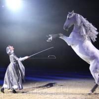 HOP TOP SHOW EQUITANA 2017 - фото IMG_1957_wm_resize-200x200, главная События Фото , конный журнал EquiLIfe