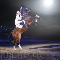 HOP TOP SHOW EQUITANA 2017 - фото IMG_1974_wm_resize-200x200, главная События Фото , конный журнал EquiLIfe